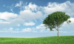 MMC, Daikin и грижата за околната среда - част 2