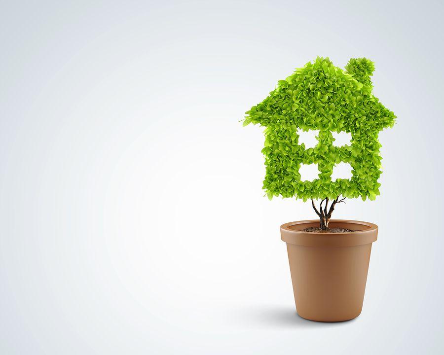 Как да пречистите въздуха у дома? Идеи от Daikin и NASA: Част III