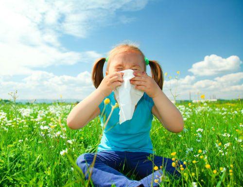 Страдате от алергии? Ето решение за Вашия проблем! Част 3
